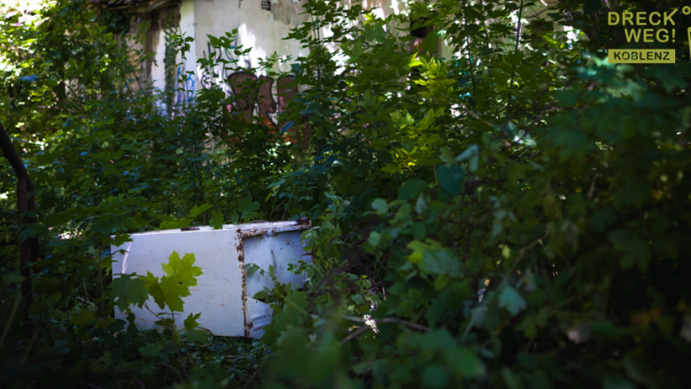 Foto:In der Natur entsorgter Kühlschrank