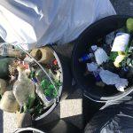 Bild: World Cleanup Day 2019 in Koblenz mit DRECK WEG, KOBLENZ!
