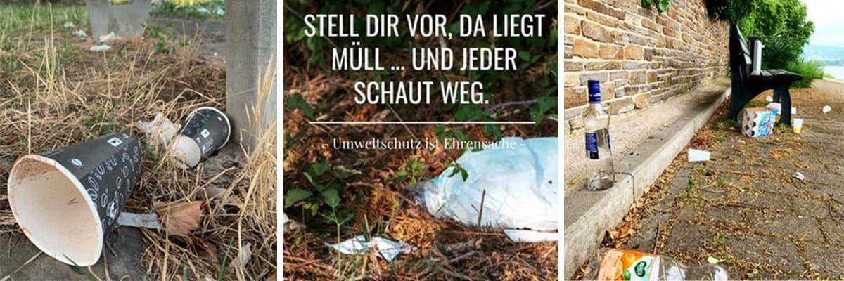 Abbildung: Fotos vom Müll sammeln bei einem Cleanup