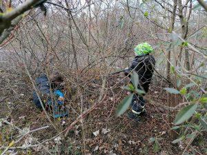 Abbildung: Kinder sammeln Müll im Gebüsch